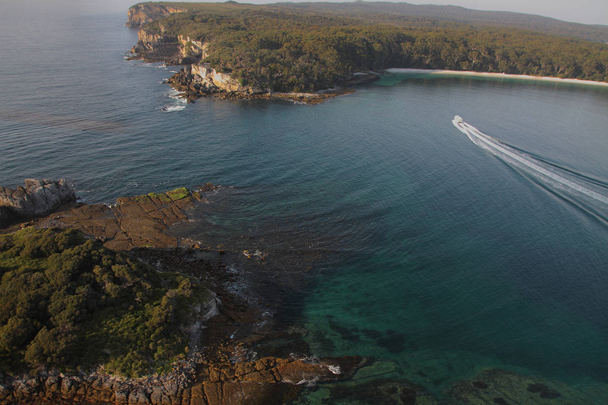 Looking for a Great Day Trip from Sydney? Come to Jervis Bay!