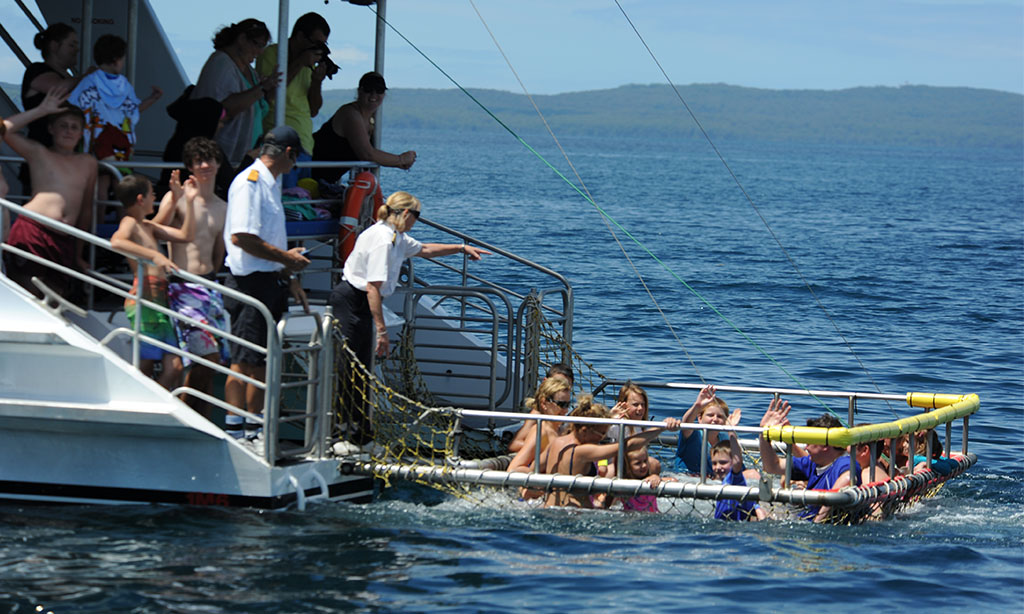 Summer Boom Netting in Jervis Bay
