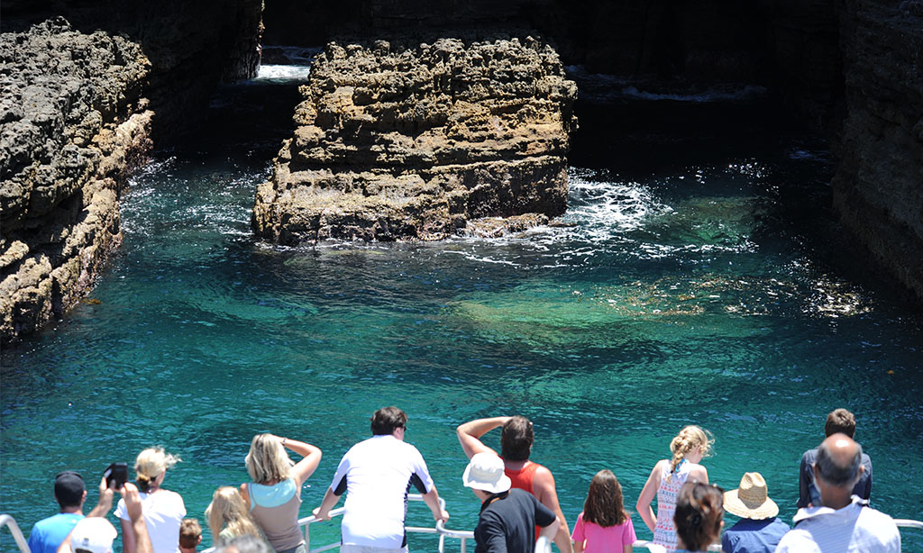 Jervis Bay Summer Eco Cruise