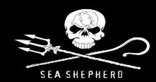 marine conservation organization