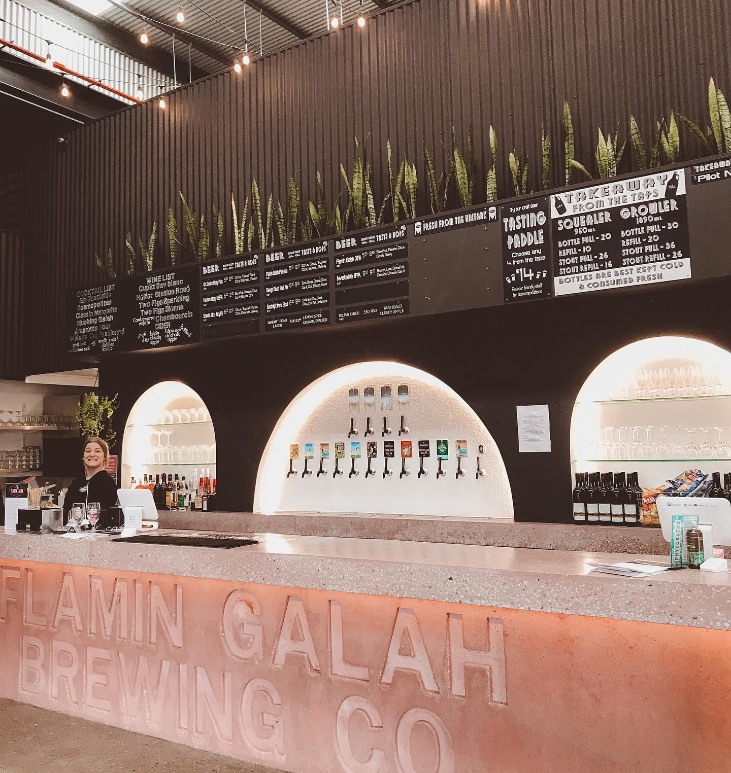 shoalhaven breweries